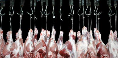 È come e cosa decidiamo di mangiare che può salvare o condannare il pianeta