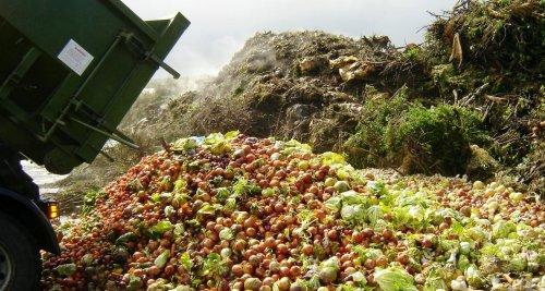 Ogni anno in Europa si sprecano 88 milioni di tonnellate di cibo