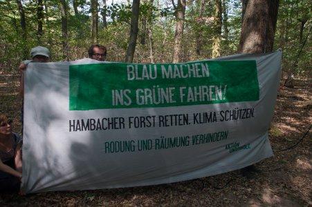 I mostri dell'energia e la resistenza verde della foresta di Hambach