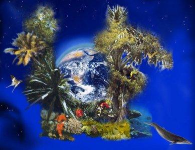 The Ecology of man, un breve saggio che aveva previsto il futuro (Prima parte)