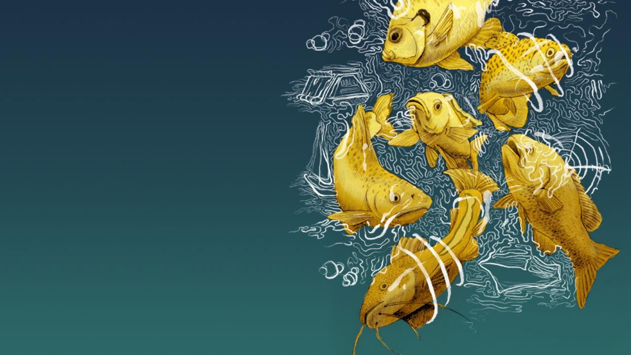 A inquinare il mare non c'è solo la plastica...