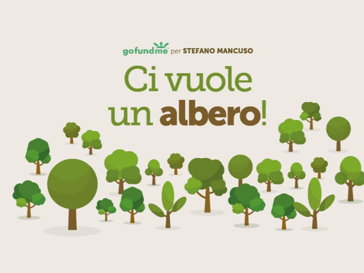 Stefano Mancuso: «A Firenze una scuola dove gli alberi puliranno l'aria»