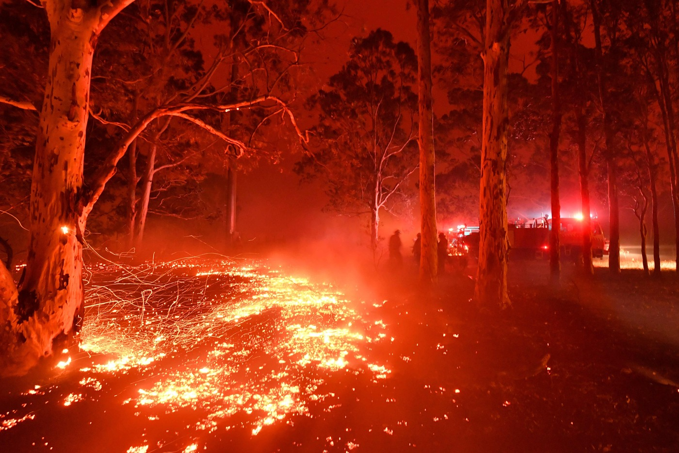 Il suicidio dell'Australia in fiamme che nega i cambiamenti climatici e provoca un'apocalisse