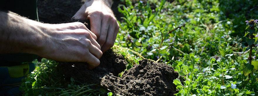 Comunità, autosufficienza, ritorno alla terra e resilienza: questo è quello che ci serve