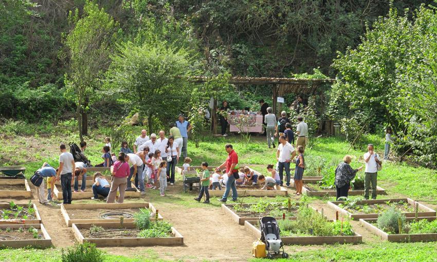 Volete realizzare un orto urbano? È il momento di farvi avanti