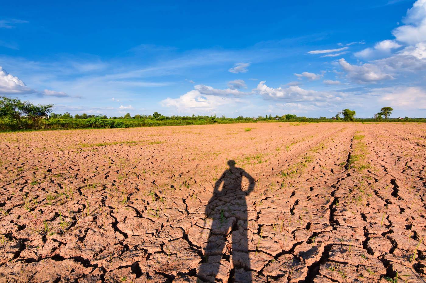Non piove da mesi, rischio desertificazione. Ma cosa ci importa, tanto siamo vaccinati!