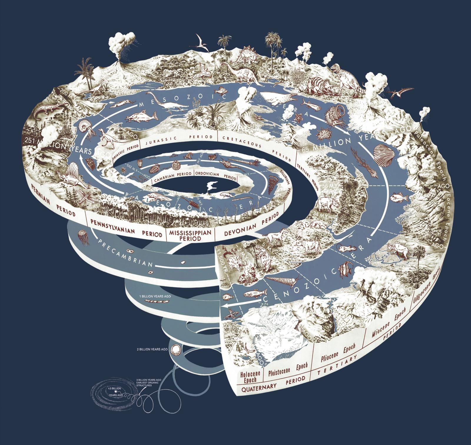 Quale era geologica per l'uomo contemporaneo?