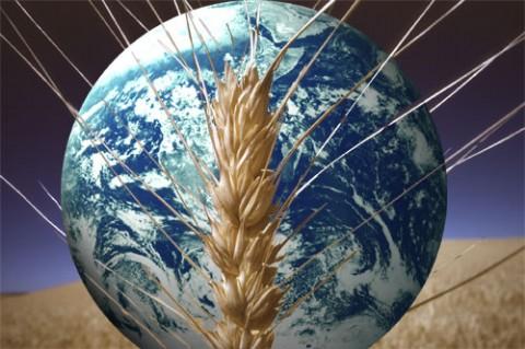 Sovranità alimentare: si chiude il primo forum europeo