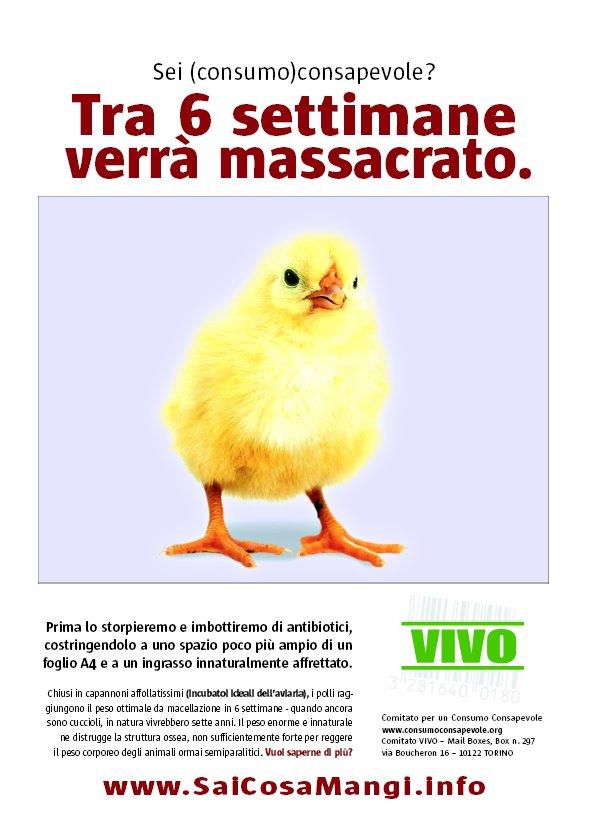 Il 1° novembre è la Giornata mondiale Vegan