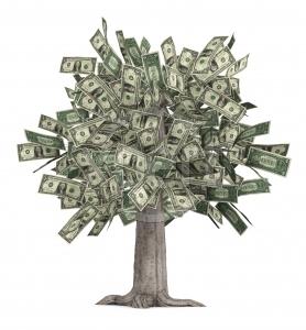 Nagoya: è sufficiente un valore in denaro per gli ecosistemi?