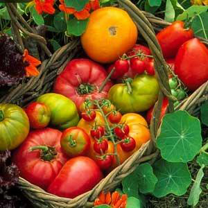 Prodotti alimentari falsi biologici, i numeri della maxi-truffa