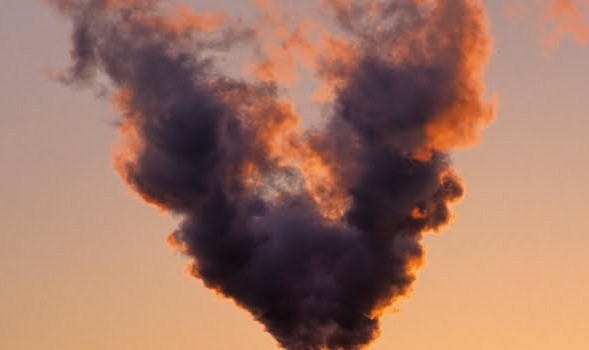 Diossine ed inceneritori: nuove evidenze di danni alla salute