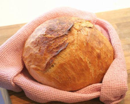 Pane al pane. I segreti della buona panificazione