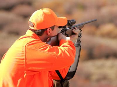 Caccia: la Camera non ammette gli emendamenti 'sparatutto'