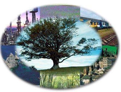 Ambiente, fondi ridotti del 60% in tre anni. Lo svela Wwf in un rapporto