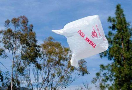Sacchetti biodegradabili. Basta proroghe, passa il decreto ambiente