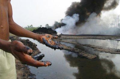 Risultati immagini per devastazione ambientale
