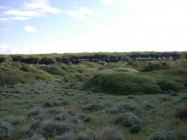 'Sul mare 2012', campi estivi sul litorale di Tarquinia