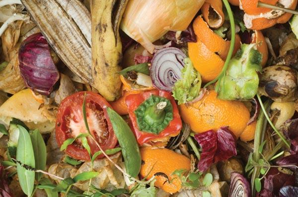 Sprechi alimentari: buttato ogni anno il 30% del cibo