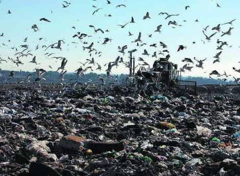 Malagrotta: i rifiuti in discarica diventano veleno per il terreno