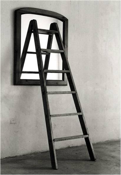 La scala di Wittgenstein e le cinture dei kamikaze