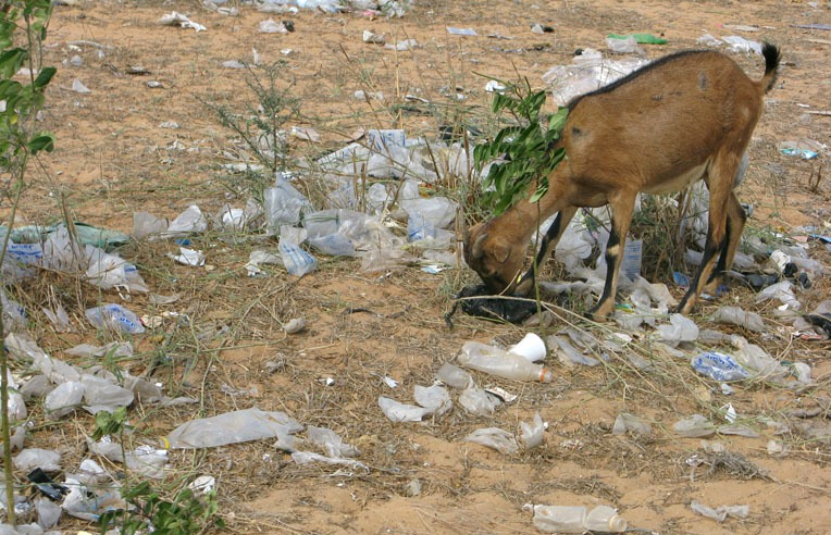 La Mauritania mette al bando i sacchetti plastica