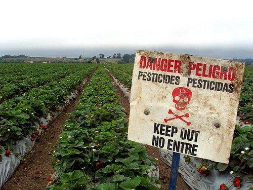 Pesticidi, associazioni presentano documento unitario