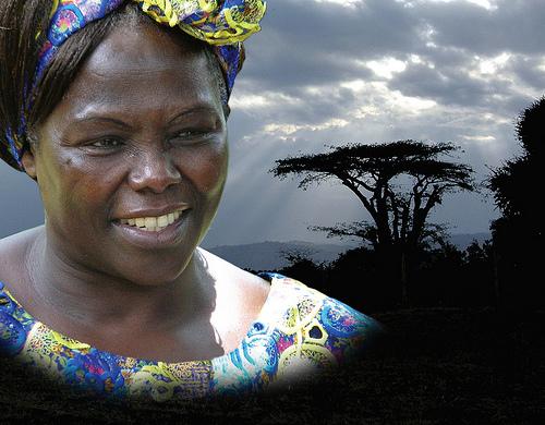 """Risultati immagini per 6 marzo 2018  PREMIO DONNE PACE AMBIENTE """"Wangari Maathai""""   vedi"""
