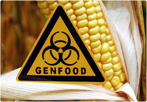 OGM: a Roma la mobilitazione per dire