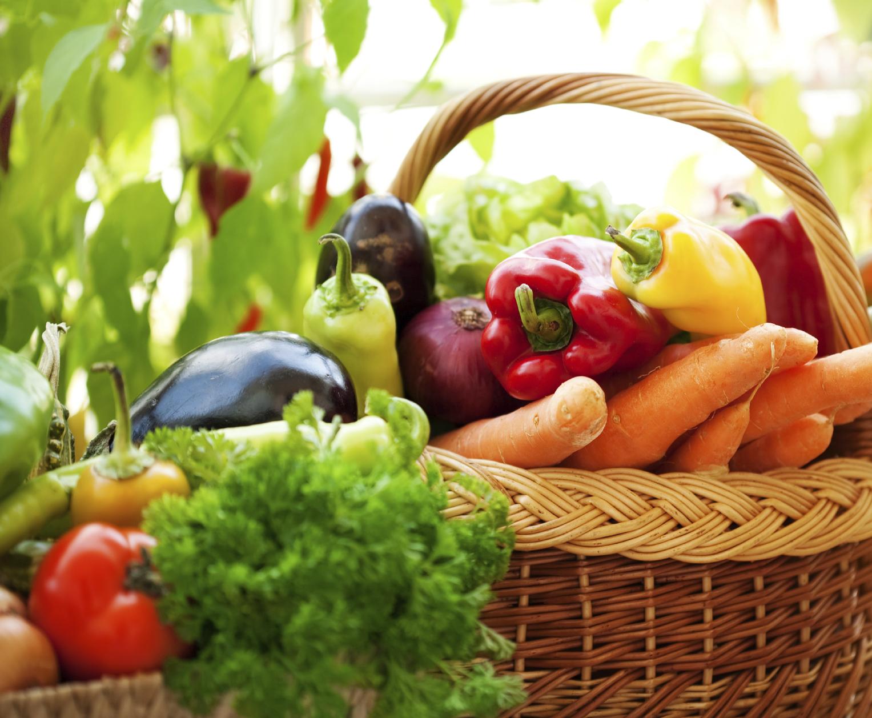 Il cibo non è una merce. In memoria dell'agricoltura siciliana