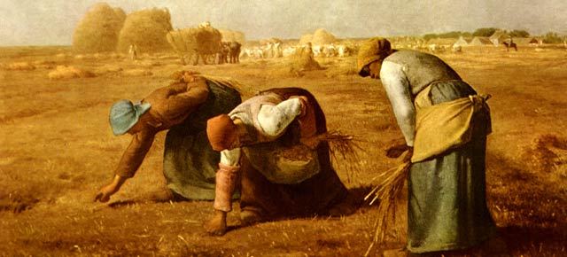 Risultati immagini per agricoltura quadro