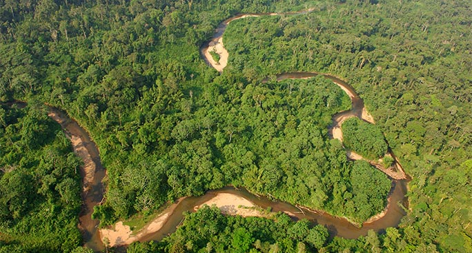 Trivellazioni nel Parco Yasunì: addio al piano per salvare gli ecosistemi dell'Ecuador