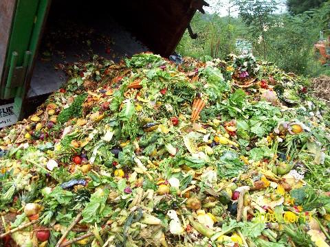 Quanta natura sprechiamo? L'altro volto dello spreco alimentare