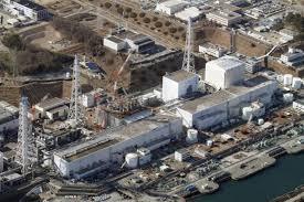 """Fukushima, """"la bonifica nucleare è in mano alla mafia"""""""