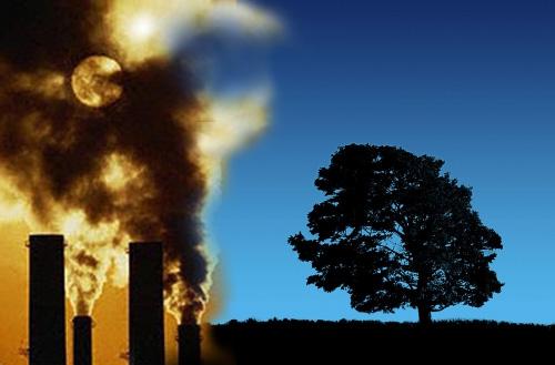 Co2: Europa già a -17%. WWF: