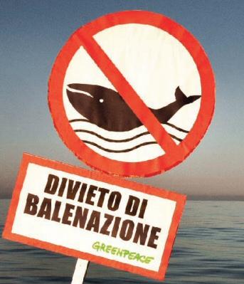 Porto Torres, la marea nera minaccia il Santuario dei Cetacei