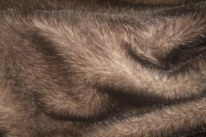 Norvegia, 'no' alle pellicce in passerella per la settimana della moda