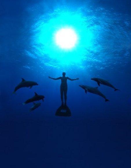 Delfini, contro la mattanza di Taiji il primo passo lo fanno le donne
