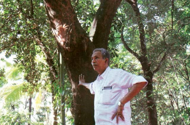 Abdul, l'uomo che protegge la foresta