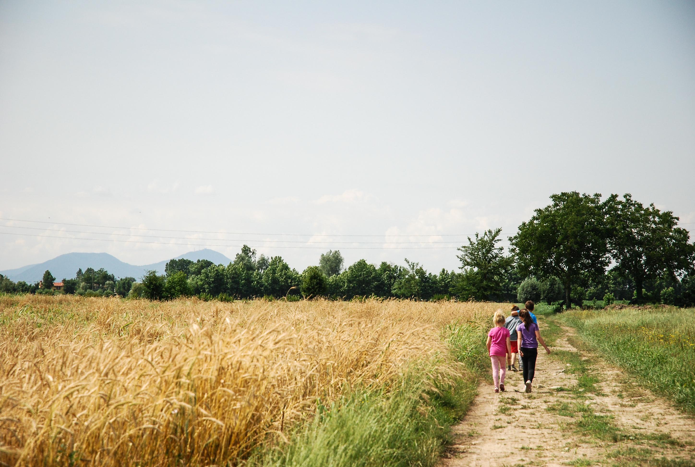 Riconvertire un'azienda agricola? Si può. Ecco che nasce la fattoria  sostenibile