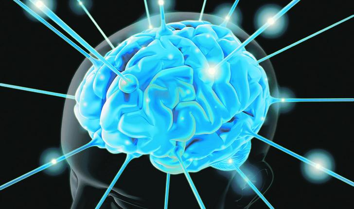Le cinque azioni che fanno lavorare meglio il cervello