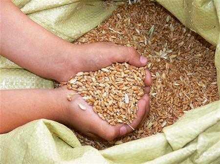 Costruiamo una nuova democrazia alimentare
