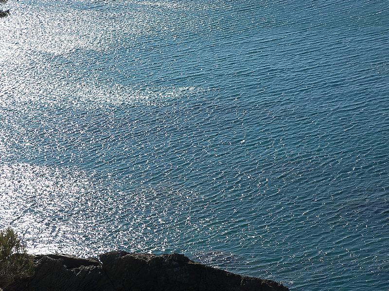 WWF: fondali del Mediterraneo messi a rischio dalle perforazioni