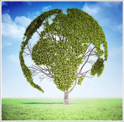 Idee e soluzioni per la post-crescita
