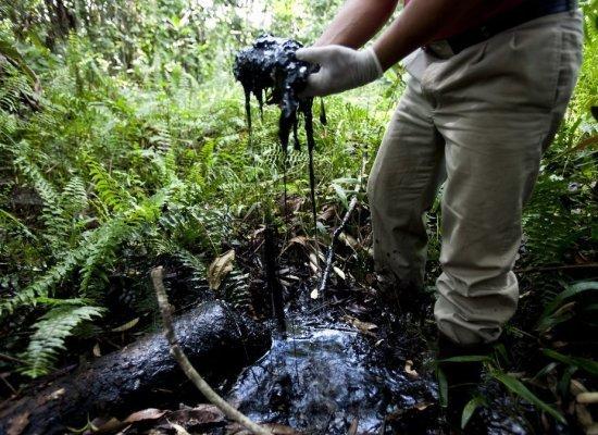 Ecuador, la Chevron condannata per danni ambientali