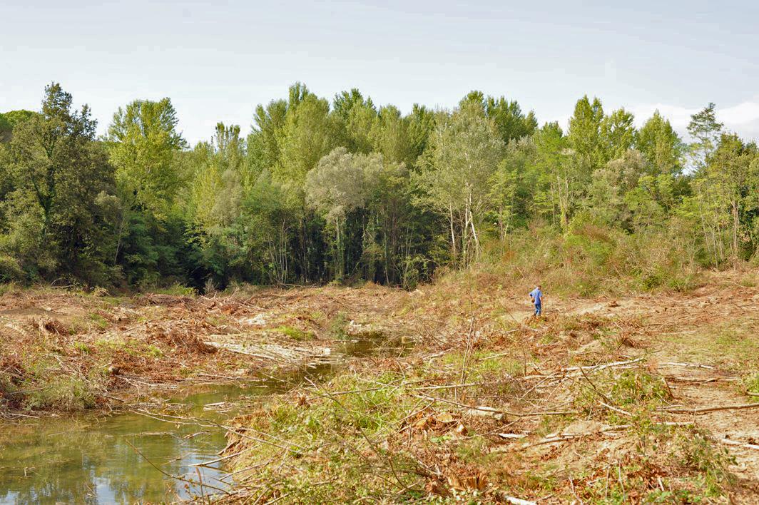 Chi uccide i fiumi toscani?