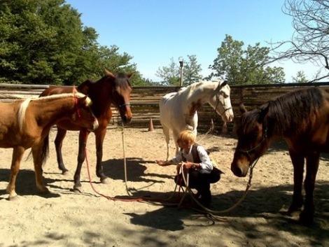 Grazia...la donna che sussurra ai cavalli