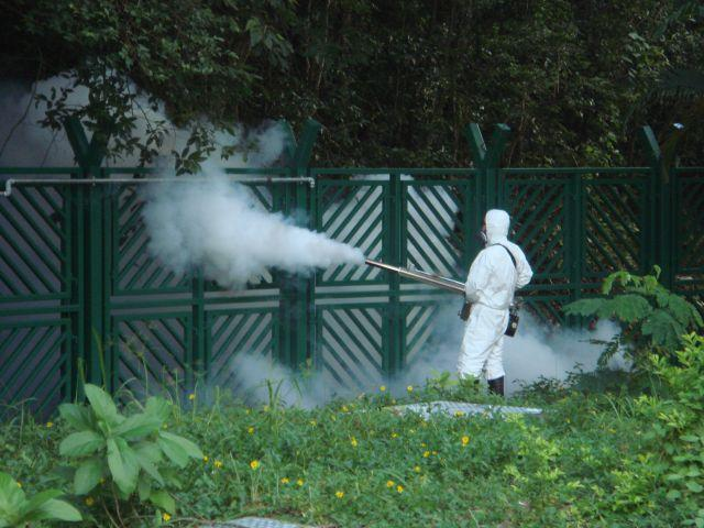 «La lotta chimica alle zanzare è inutile e pericolosa»