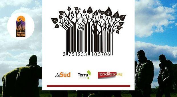 #Filierasporca: lo sfruttamento del lavoro in agricoltura