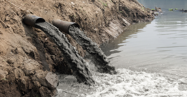 Il crimine ambientale rende sempre di più